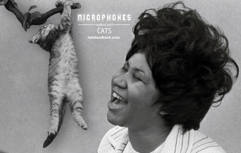 Aretha Franklin Sings Into a Cat
