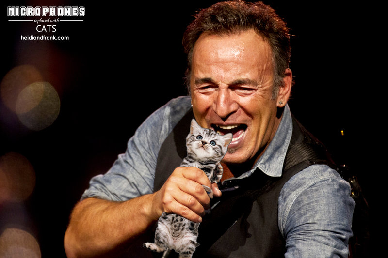Bruce Springsteen Sings Into a Cat