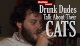 Drunk Dudes Talk About Their Cats